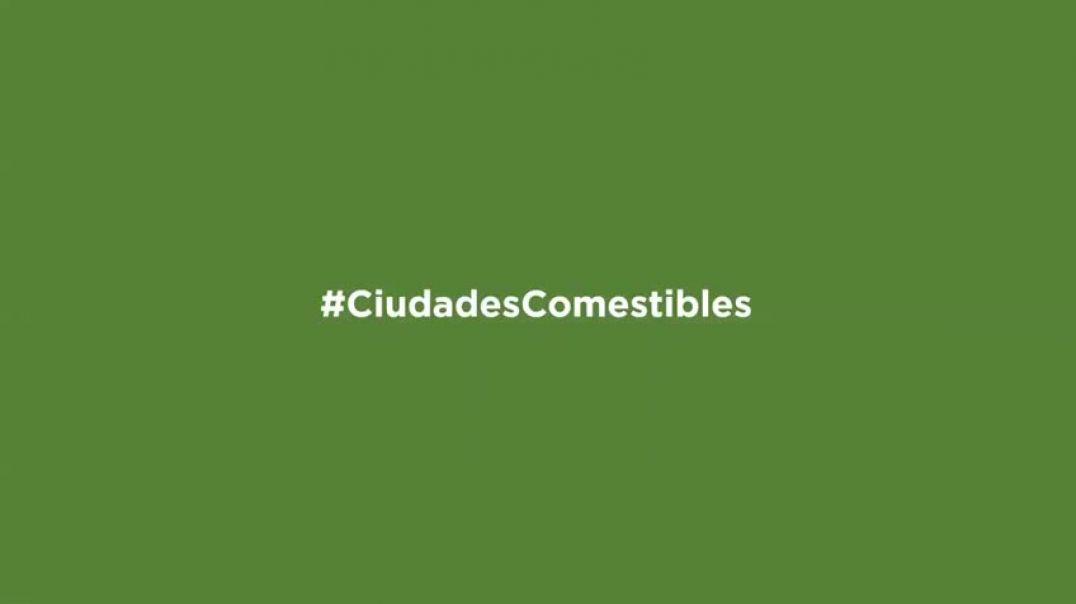 #CiudadesComestibles - #5minutos1idea