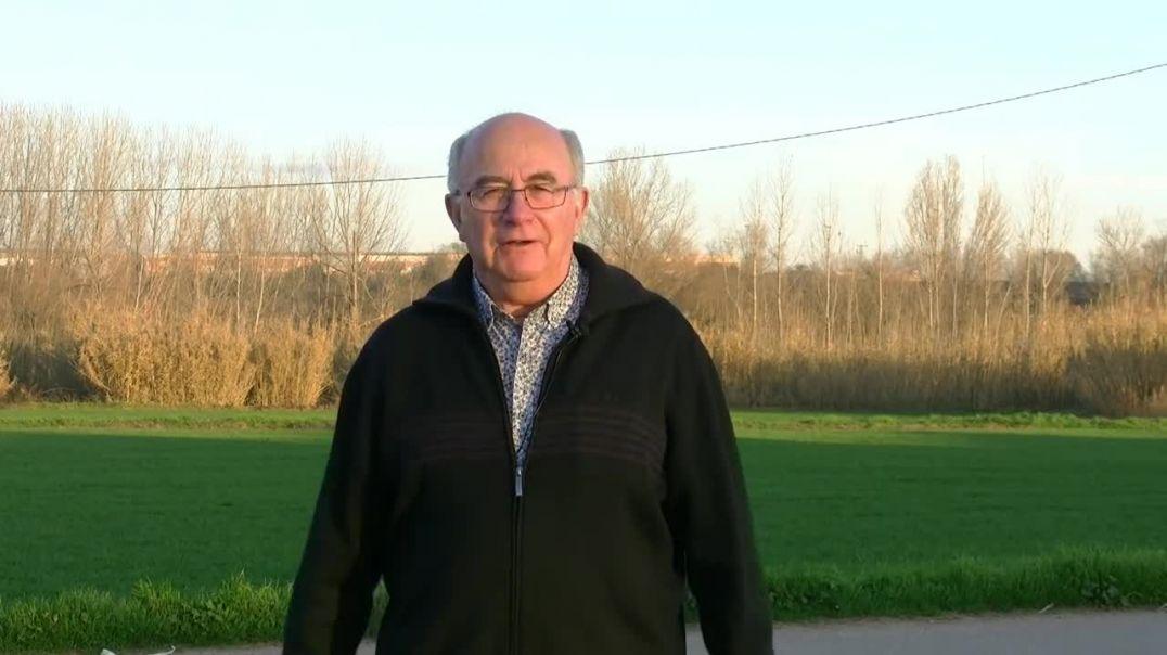 JOSEP PAMIES - DULCE REVOLUCION