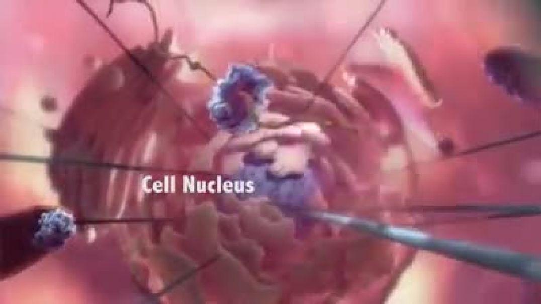 Viróloga explica el virus y la enfermedad respiratoria