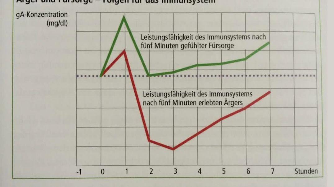 Sistema inmune anímico / Pedagogía de Emergencia. Los pensamientos influyen en la salud.