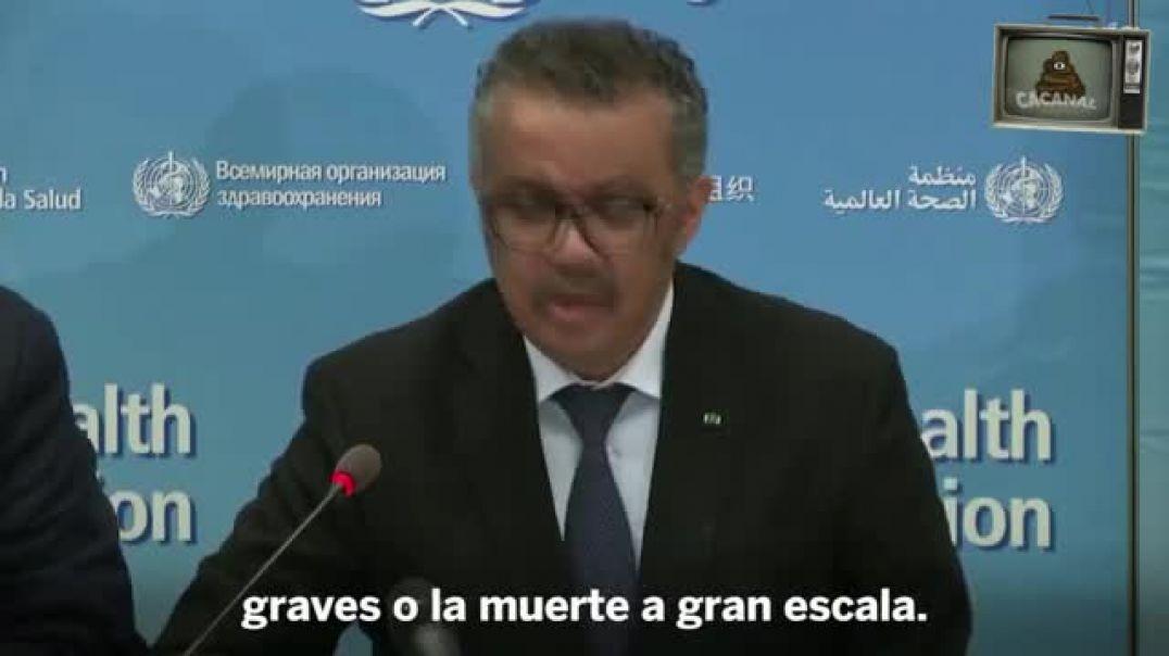 LA CANCION OFICIAL DEL CIRCOVID