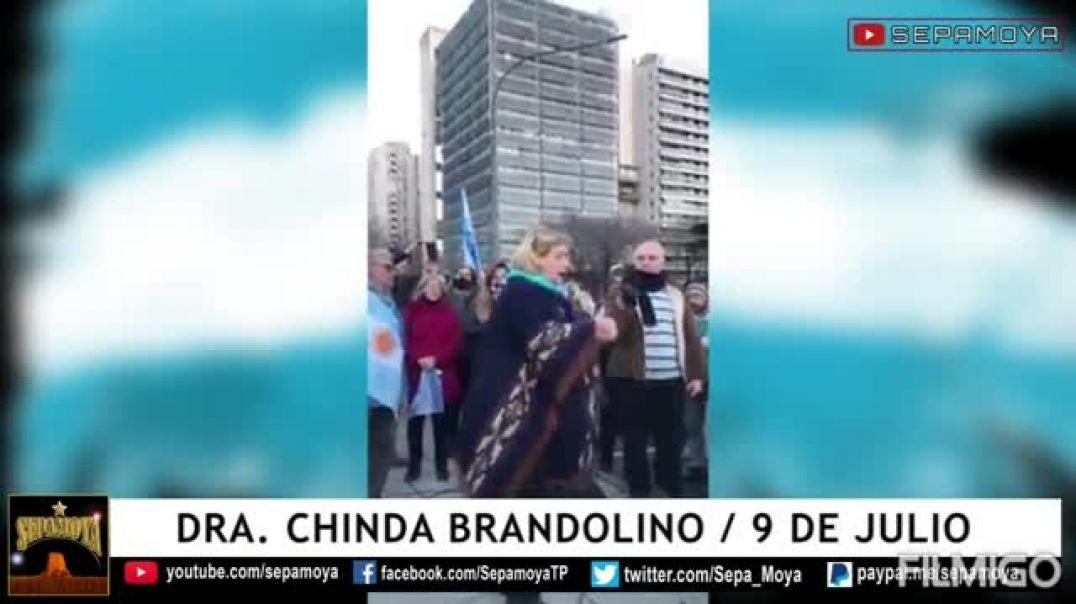 Argentina querida lucha.Dra. Chinda Brandolino en la marcha y protesta