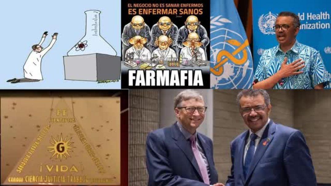 La INUTILIDAD de las PCR y VACUNAS - Dra. Martinez Albarracin nos lo cuenta todo !!!!