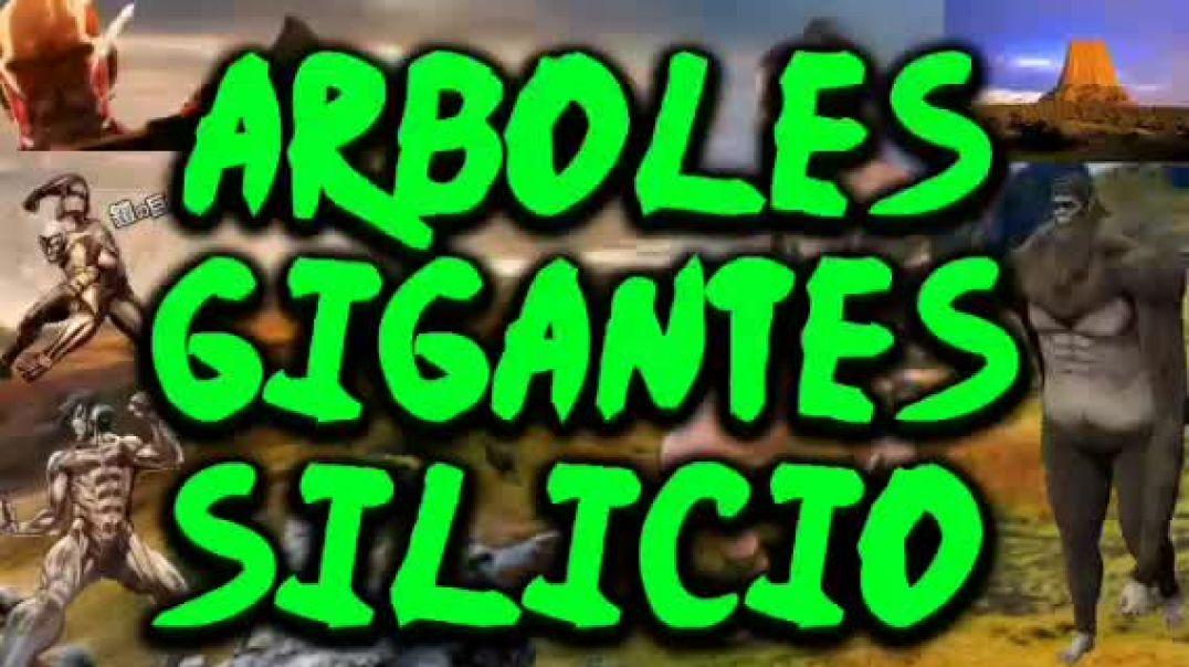 ARBOLES GIGANTES