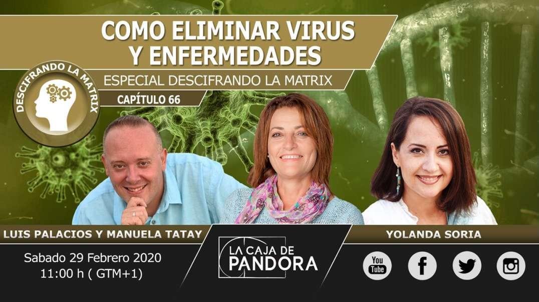 COMO ELIMINAR VIRUS Y ENFERMEDADES con Yolanda Soria, Manuela Tatay, Luis Palacios