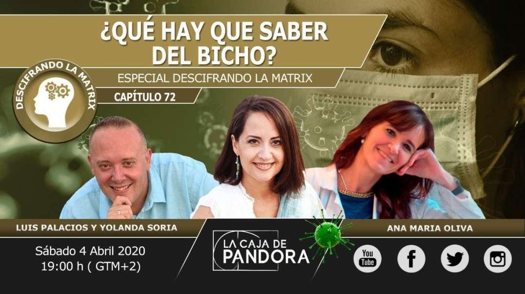 ESPECIAL, ¿QUÉ HAY QUE SABER DEL BICHO_ con Ana María Oliva, Yolanda Soria, Luis Palacios (720p_30fp