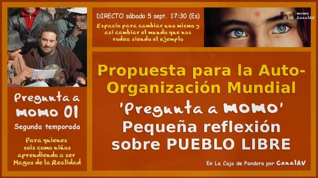 Pregunta a momo 01 - Propuesta Auto-Organización Mundial (720p_30fps_H264-192kbit_AAC)