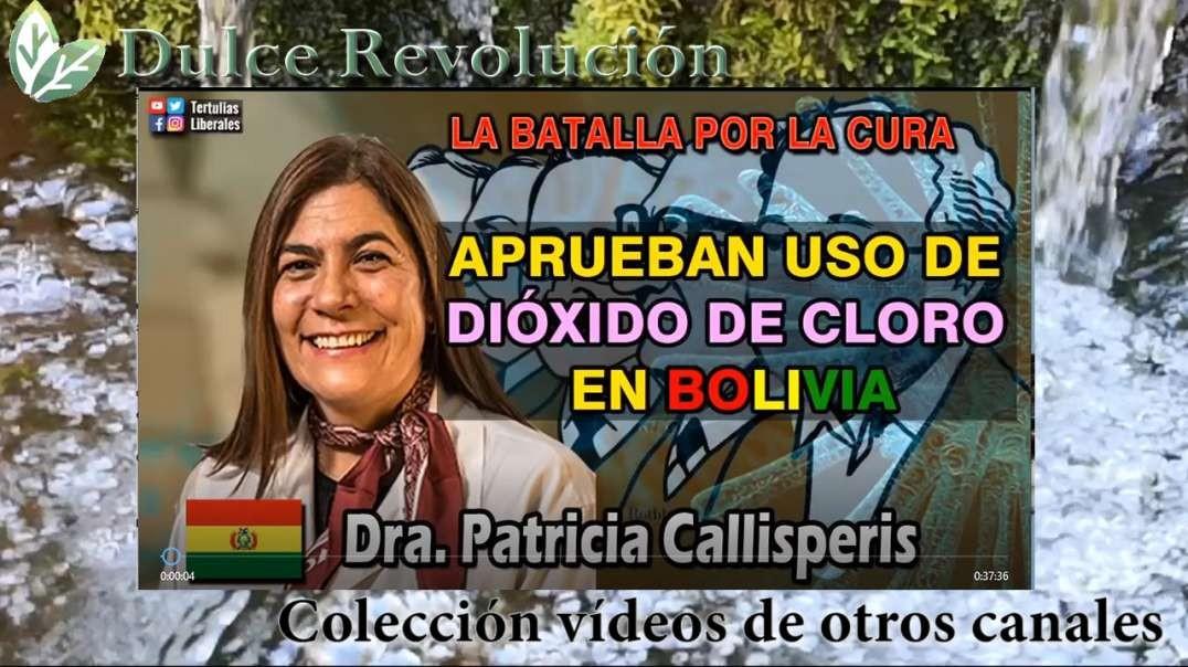 MMS; la batalla por la cura en Bolivia Dra.Patricia Callisperis original