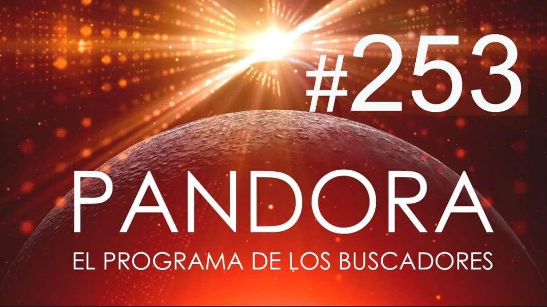 PANDORA #253: Cómo utilizar la Ley de la Atracción - Numerología Kármica - El Detox Definitivo