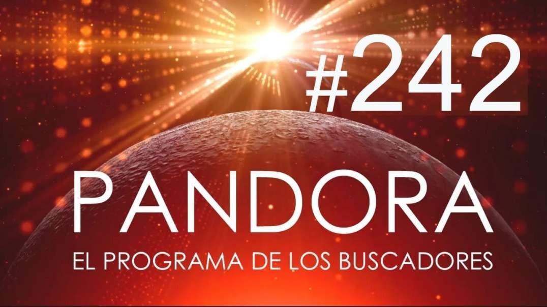 PANDORA #242: EL SOL - Despierta Tus Guías - El Poder del AQUÍ y el AHORA