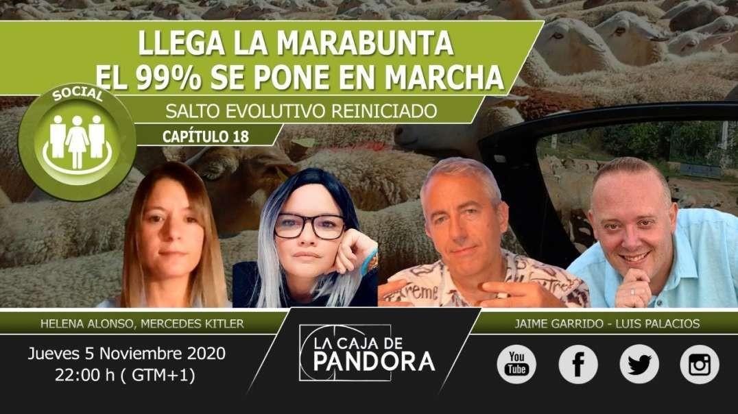 LLEGA LA MARABUNTA – El 99% se Pone en Marcha