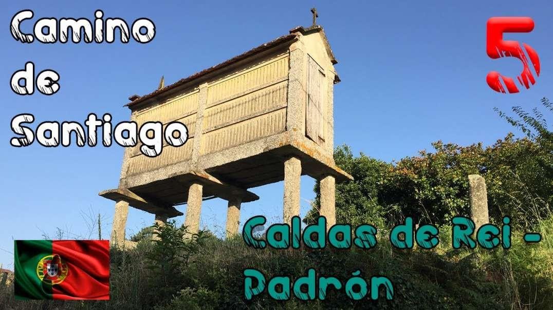 Quinta etapa del Camino de Santiago Portugués - 2018