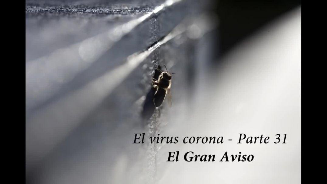 CENSURADO EN YOUTUBE - El virus corona - Parte 31 - El gran aviso