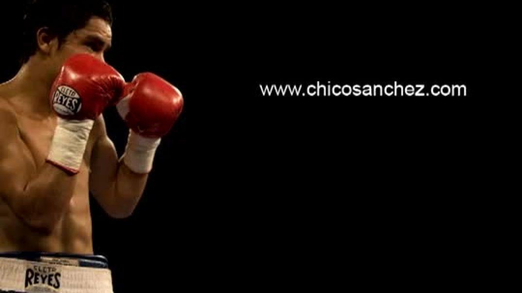 El boxeo - El culto a la violencia