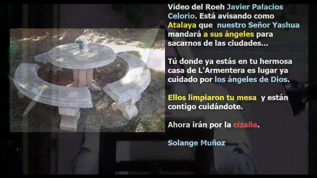 Mensaje a la humanidad de Javier Palacios celorio