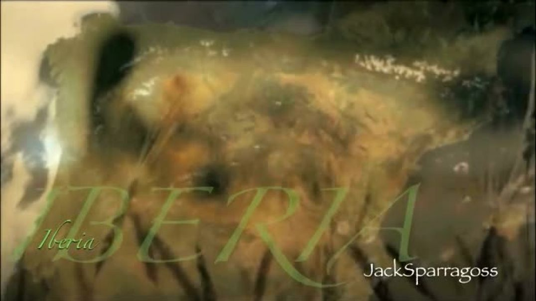 musicHACK: WARCryIberia Jack Sparragoss