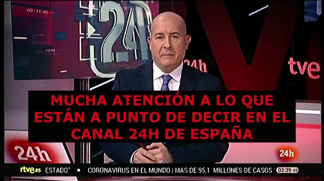 ⛔Nuevo proyecto de TV Borregos 24h