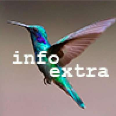 Info Extra