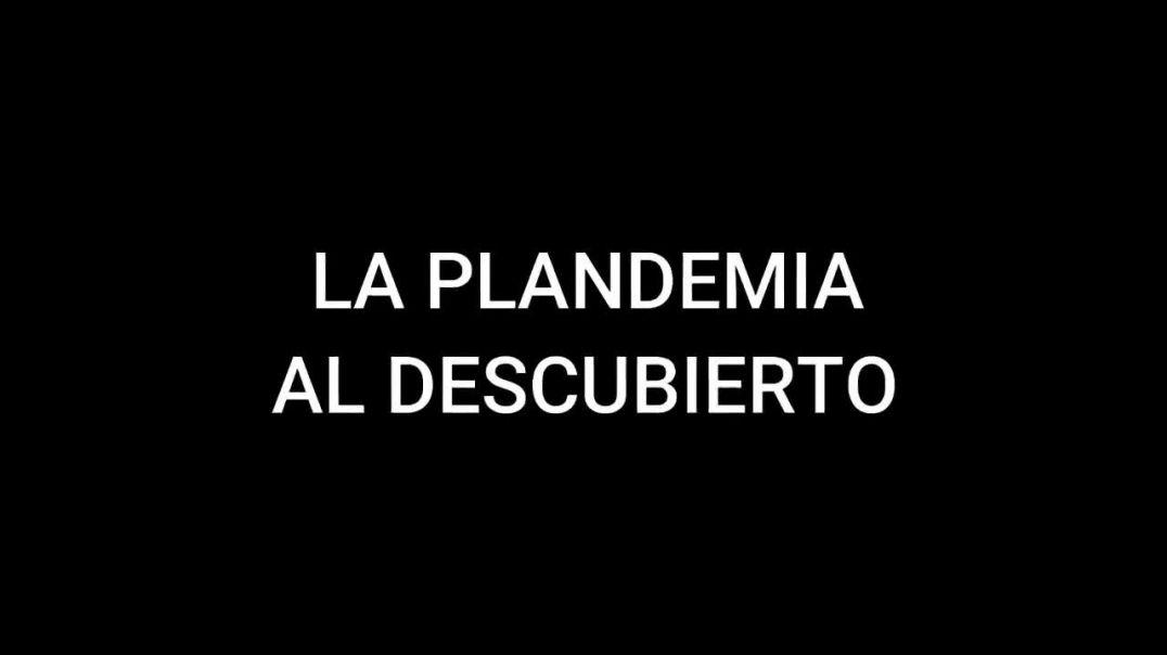 ✅ LA PLANDEMIA AL DESCUBIERTO 05-02-21 ✅