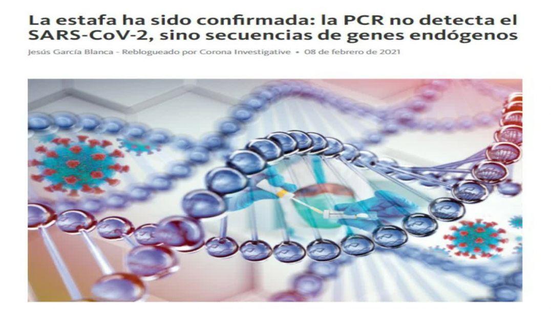 LA GRAN MENTIRA DESCUBIERTA | ANÁLISIS E INTERPRETACIÓN DEL ESTUDIO SOBRE TEST RT-PCR EN PROFUNDIDAD