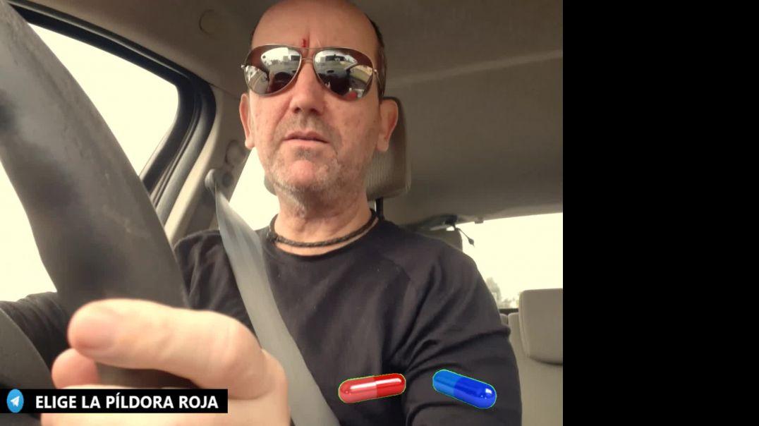 """SOBRE LOS """"BORREGOS"""" Y EL GRAN DESPERTAR."""