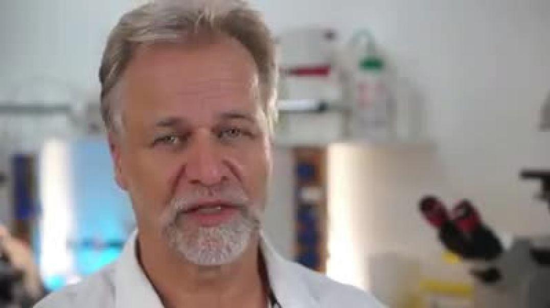 Resumen de videos sobre la efectividad del dióxido de cloro.