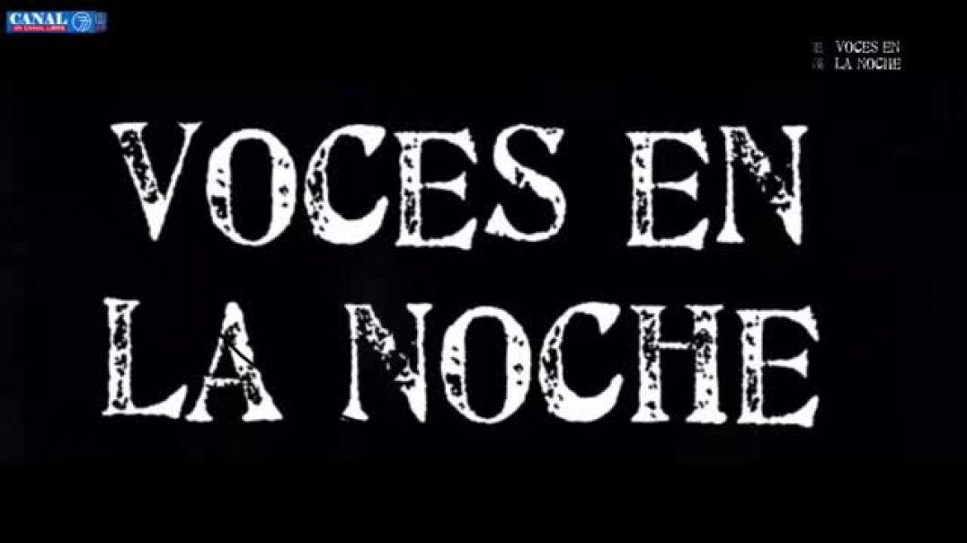 ENTREVISTA EN CANAL 77, PROGRAMA VOCES EN LA NOCHE | 20 DE MARZO DE 2021