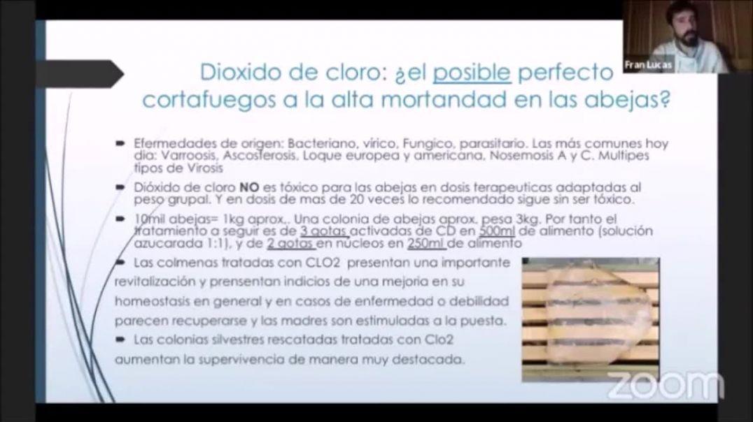 Dioxido de cloro en abejas. Conferencia Comusav Fran Lucas