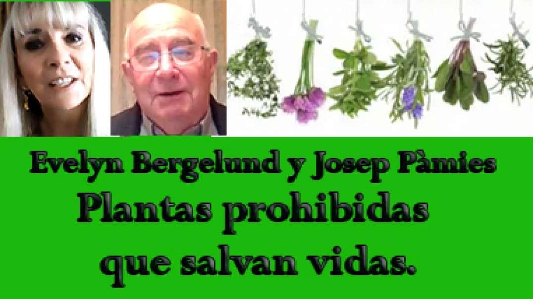 Plantas prohibidas que salvan vidas, Josep Pàmies.