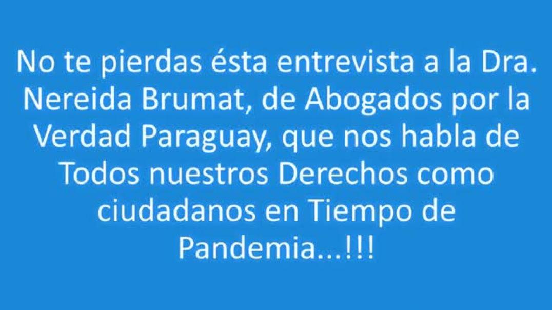 Abogados por la libertad Paraguay. A la luz de la Verdad