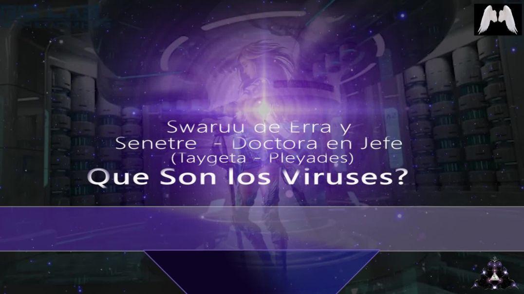 Que es el virus