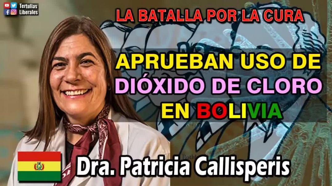 Bolivia aprueba el dióxido de cloro