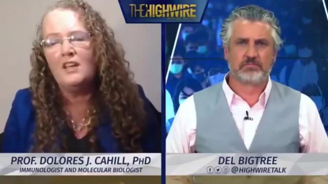 Entrevista a DOLORES CAHILL