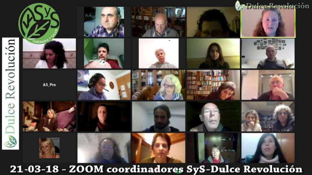 21-03-18 - ZOOM coordinadores SyS - Dulce Revolucion