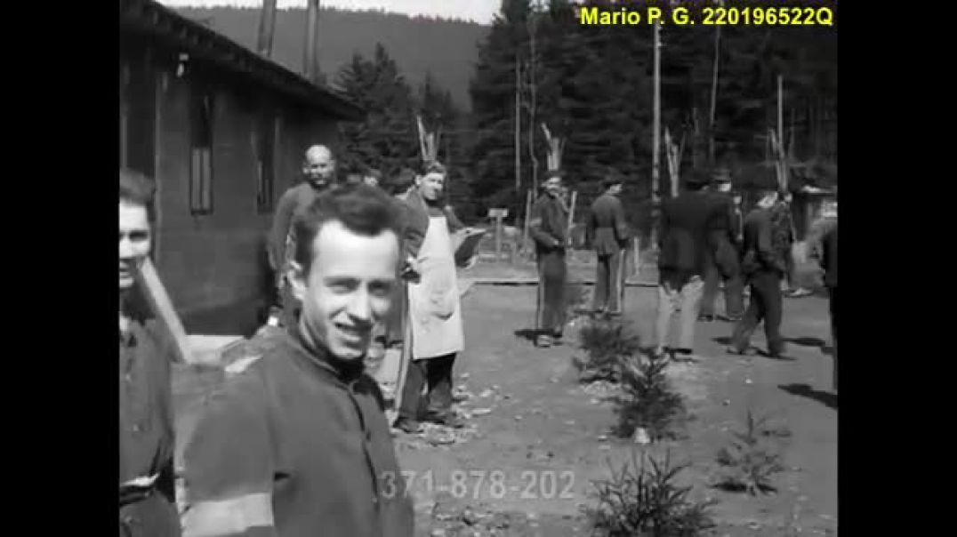 Muertes por Tifus tras la liberación de los KZ.