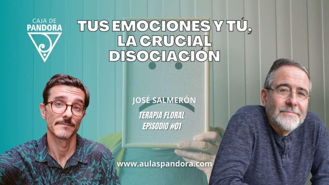 TUS EMOCIONES Y TÚ, la crucial Disociación - José Salmerón ( TERAPIA FLORAL #01 )