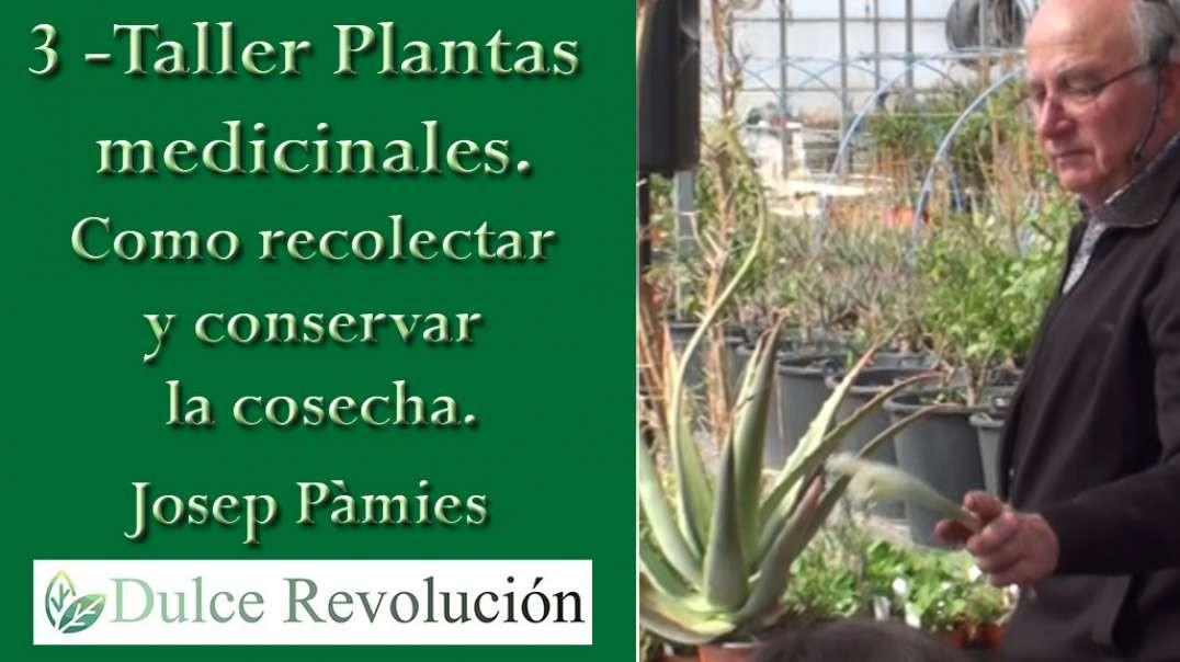 3 - Taller Plantes Medicinals - Cómo recolectar y conservar la cosecha. (Josep Pàmies).