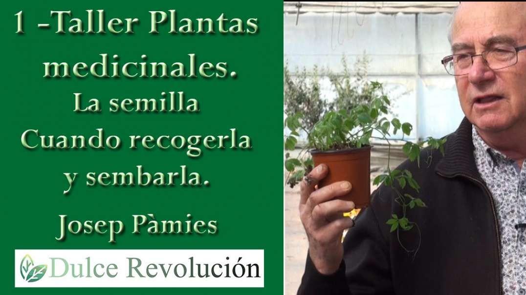 1 - Taller Plantes Medicinals - La Semilla, cuando recogerla y sembrarla. (Josep Pàmies).