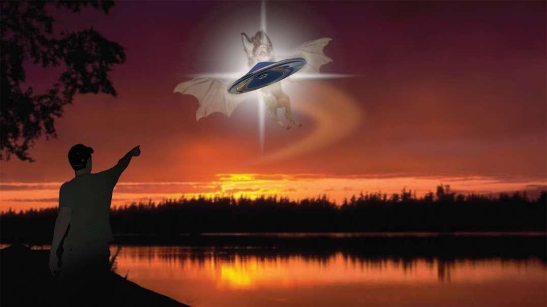 ¿Qué son los OVNI o UFO_ ?