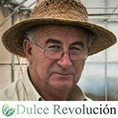 Associación Dulce Revolucion de les plantes