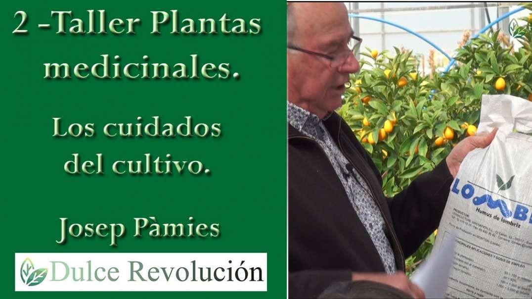 2 - Taller Plantes Medicinales - Los cuidados del cultivo. (Josep Pàmies).