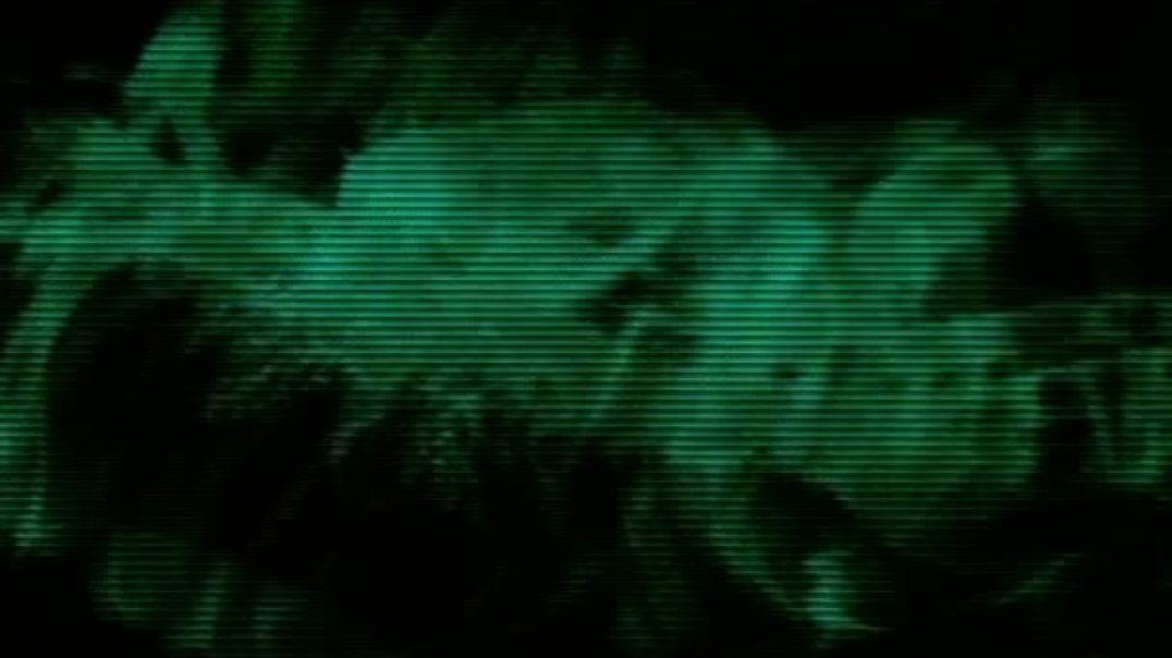 02 Bacterias Curativas