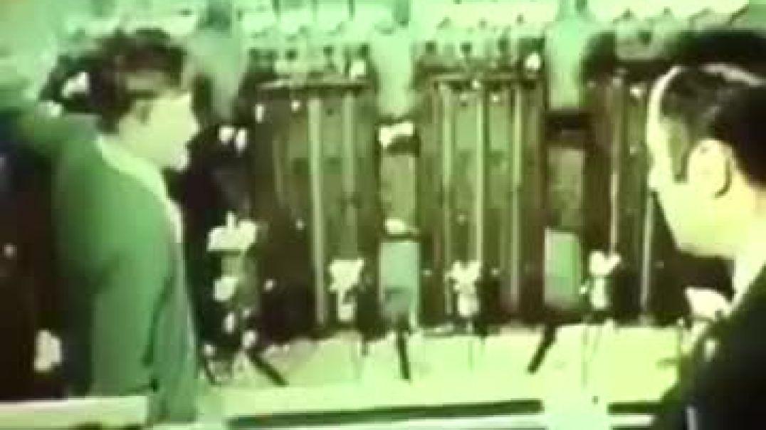 Universo 25 mgtow 3.0 Videos Mgtow de la epoca dorada