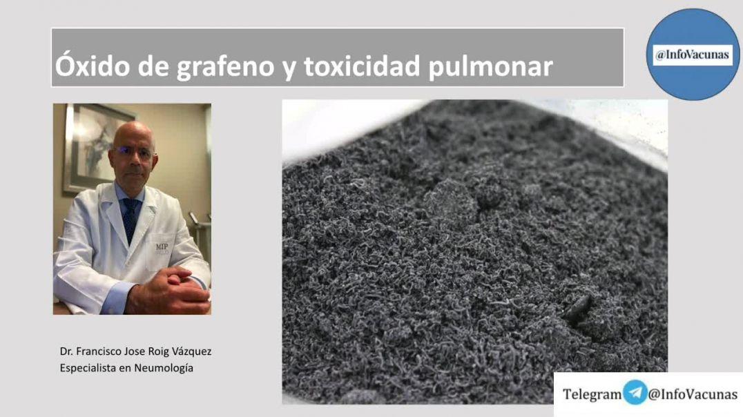 OXIDO DE GRAFENO Y TOXICIDAD PULMONAR