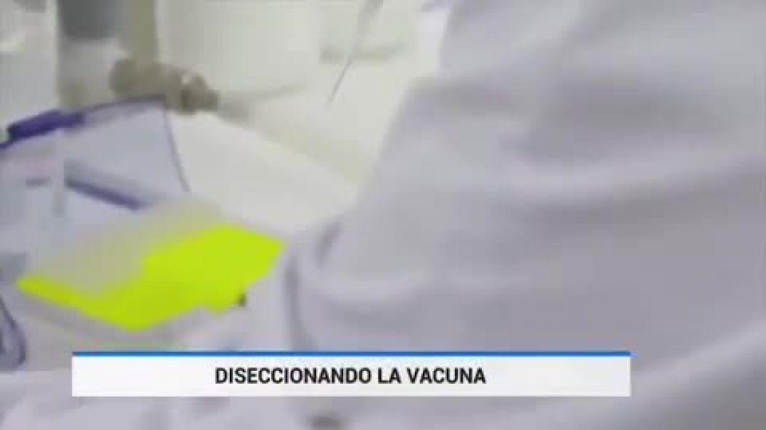 """¿Nanopartículas """"secretas"""" en las vacunas?"""