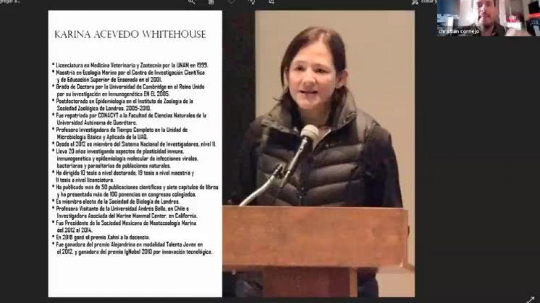 La otra cara de la moneda -Karina Acevedo  Whitehouse.