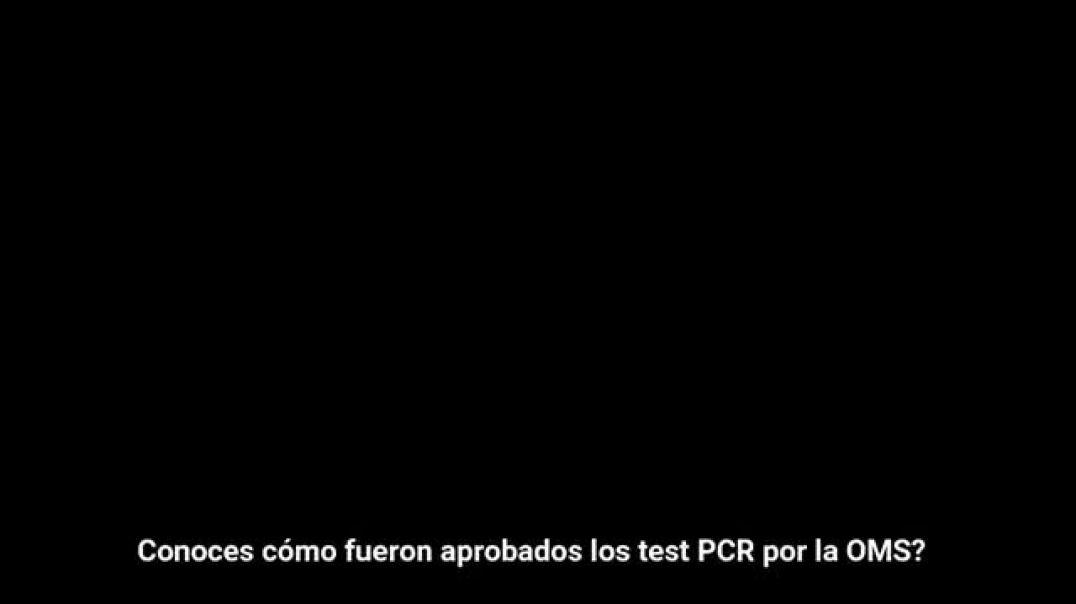 ¿Cómo aprobaron los test PCR?