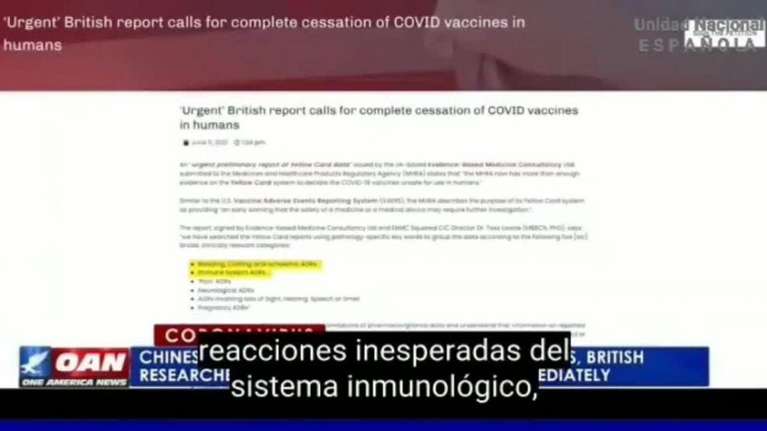 Médicos ingleses piden el cese total de las vacunas anticovid.