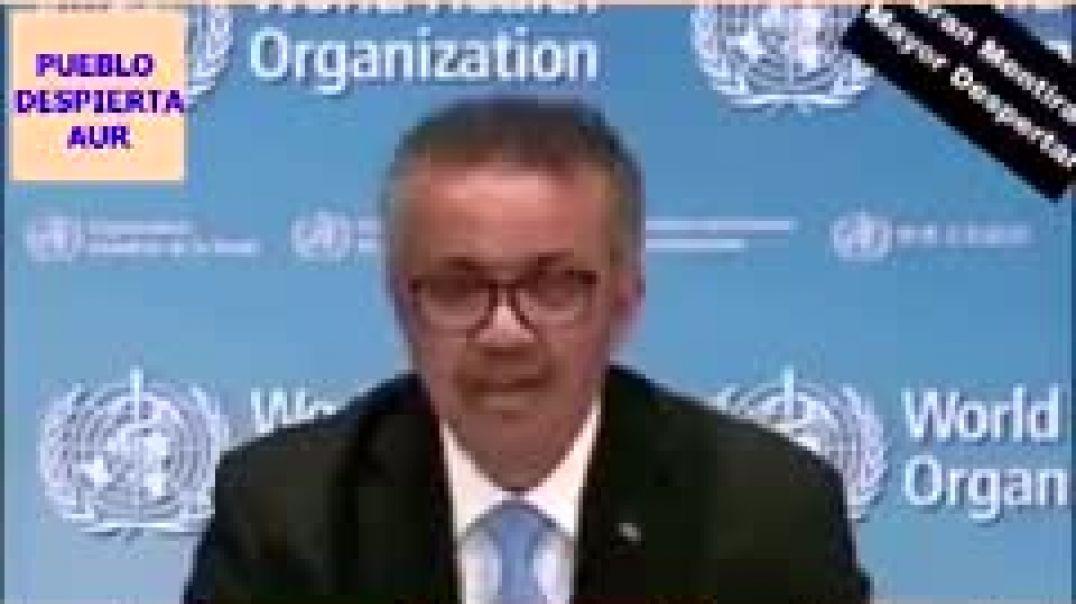 Información filtrada sobre el Banco Mundial y su relación con el coronaplan