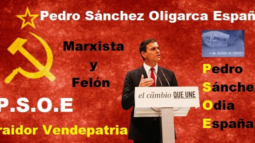 ¡Fuera Pinocho!... Pedro Sánchez en la Mareta (Lanzarote)